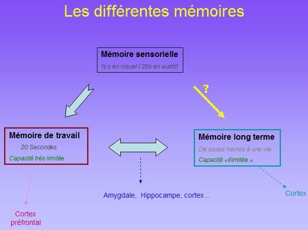 Problème de mémoire à court terme